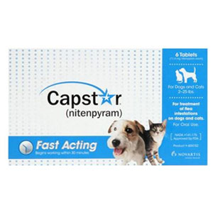 Buy Capstar Online, Otc Medicine For Cats