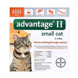 Buy Advantage II for Cats Online, Otc Medicine For Cats
