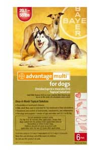 Buy Advantage Multi for Dogs (Dogs 20-55 lbs (Red) 6 Pack) Online, Rx Medicine For Dogs