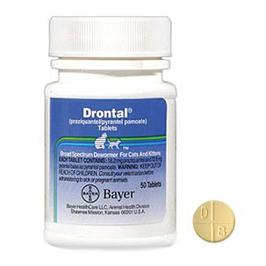 Buy Drontal Feline Online, rx medicine for cats