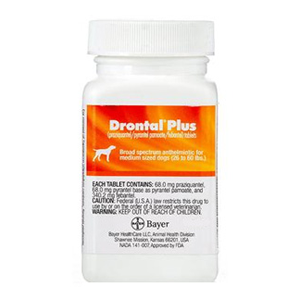 Buy Drontal Plus for Dogs Online, Rx Medicine For Dogs