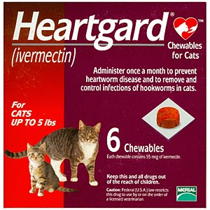 Buy Heartgard for Cats Online, Rx Medicine For Cats